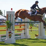 Quotes About Horse Show 29 Quotes