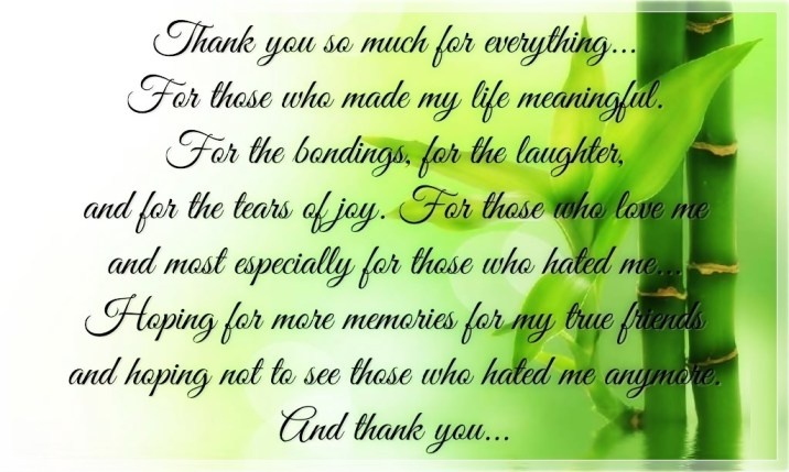 Quotes about Thank You For Everything (41 quotes)