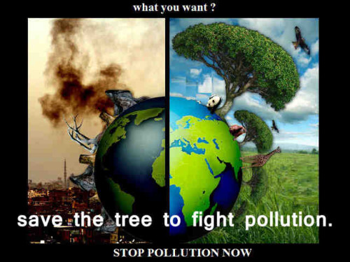 quotes about river pollution 13 quotes