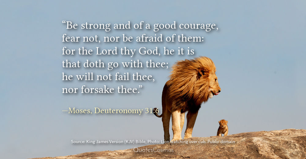 Israelites Wilderness Bible