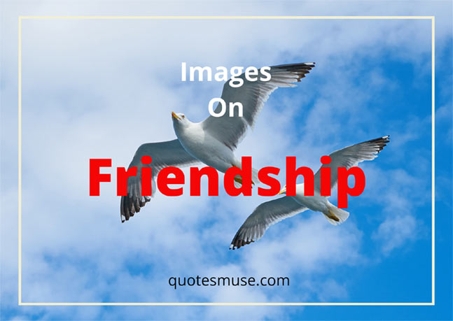 images-on-friendship