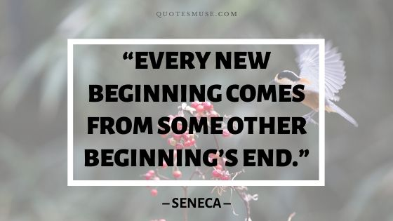 100 New Life Journey Quotes to Move Forward