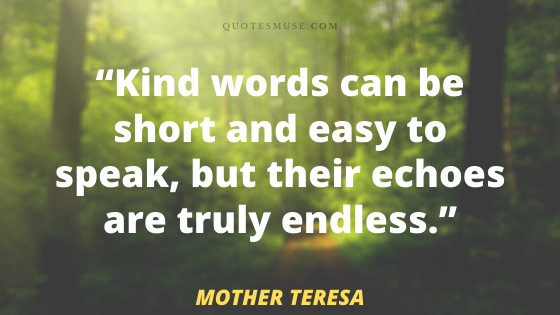 40 Mother Teresa Quotes to Grow Endless Kindness