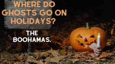 Halloween Funny quotes 2021