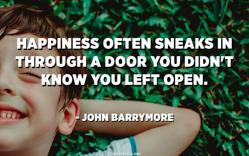 Happiness often sneaks in through a door you didn't know you left open. - John Barrymore