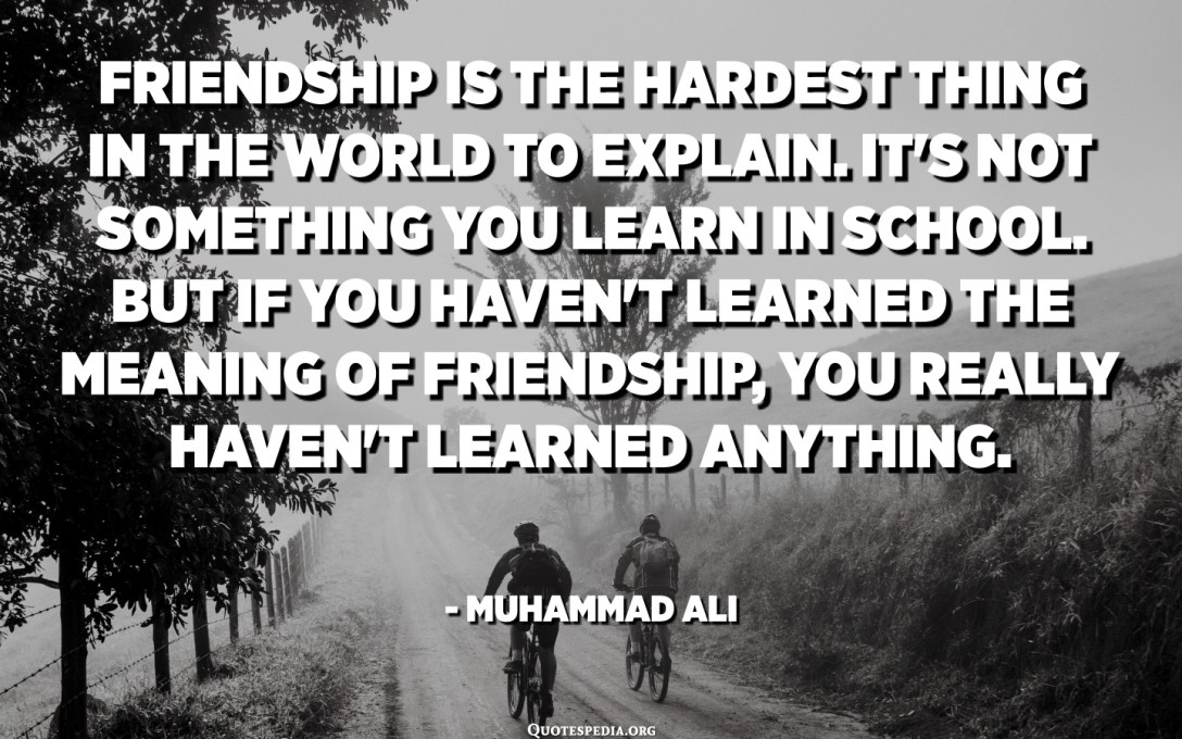 Friendship is the hardest thing in the world to explain. It's not something you learn in school. But if you haven't learned the meaning of friendship, you really haven't learned anything. - Muhammad Ali