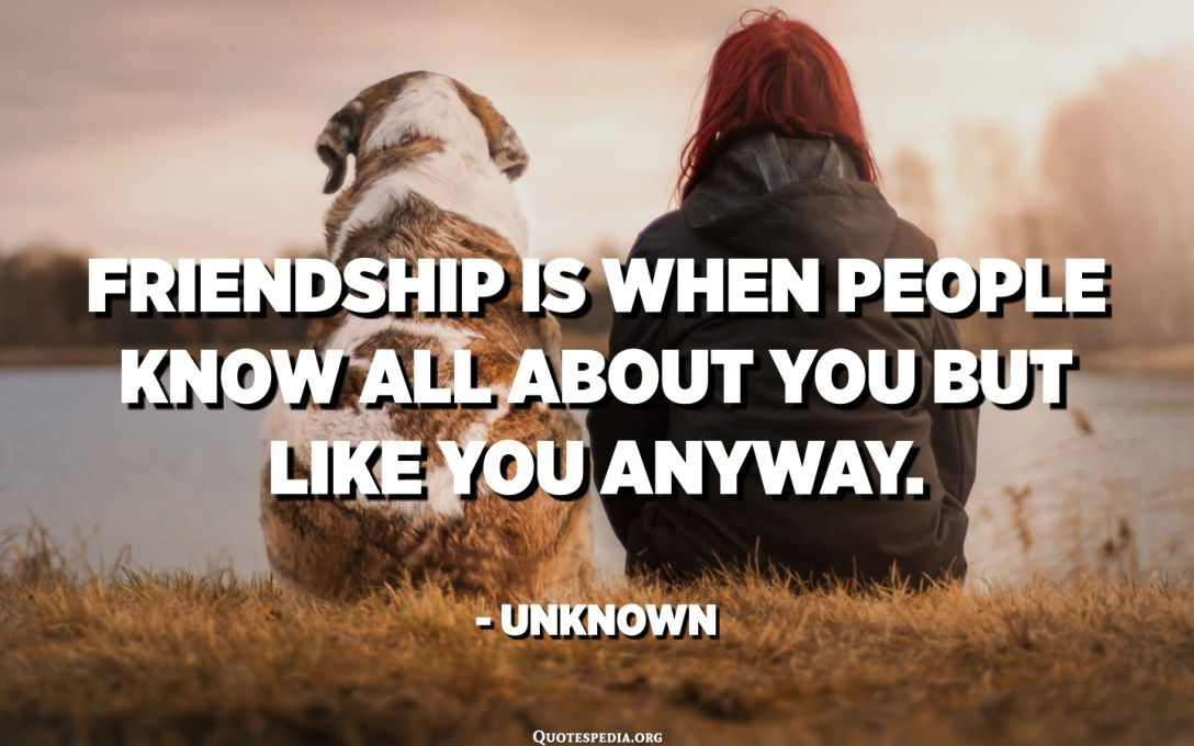 Friendship is when people know all about you but like you anyway. - Unknown