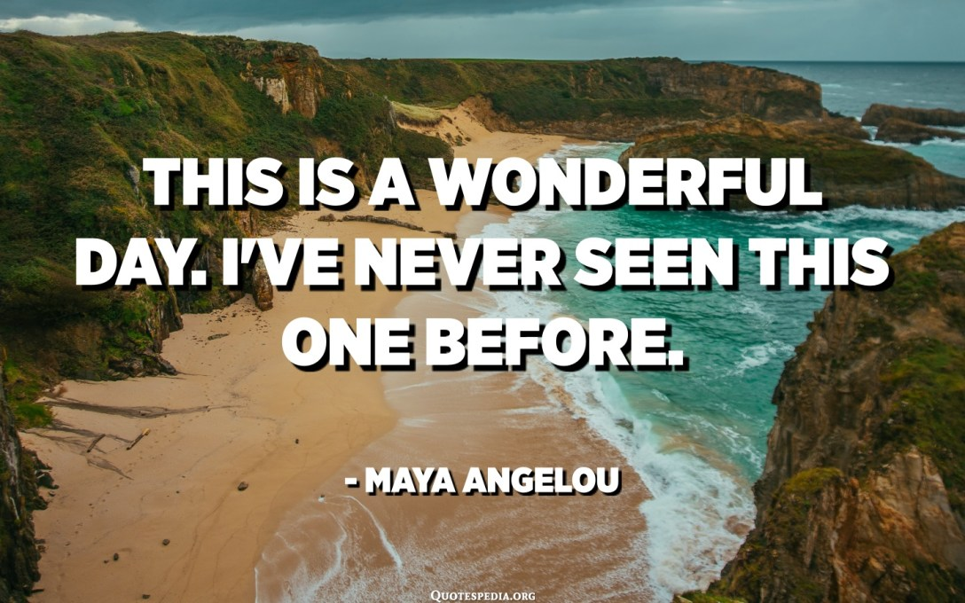 This is a wonderful day. I've never seen this one before. - Maya Angelou