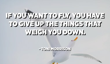 If you want to fly, you have to give up the things that weigh you down. - Toni Morrison