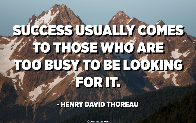 Success usually comes to those who are too busy to be looking for it. - Henry David Thoreau