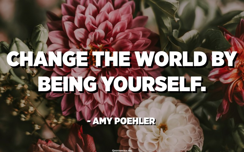 Change the world by being yourself. - Amy Poehler