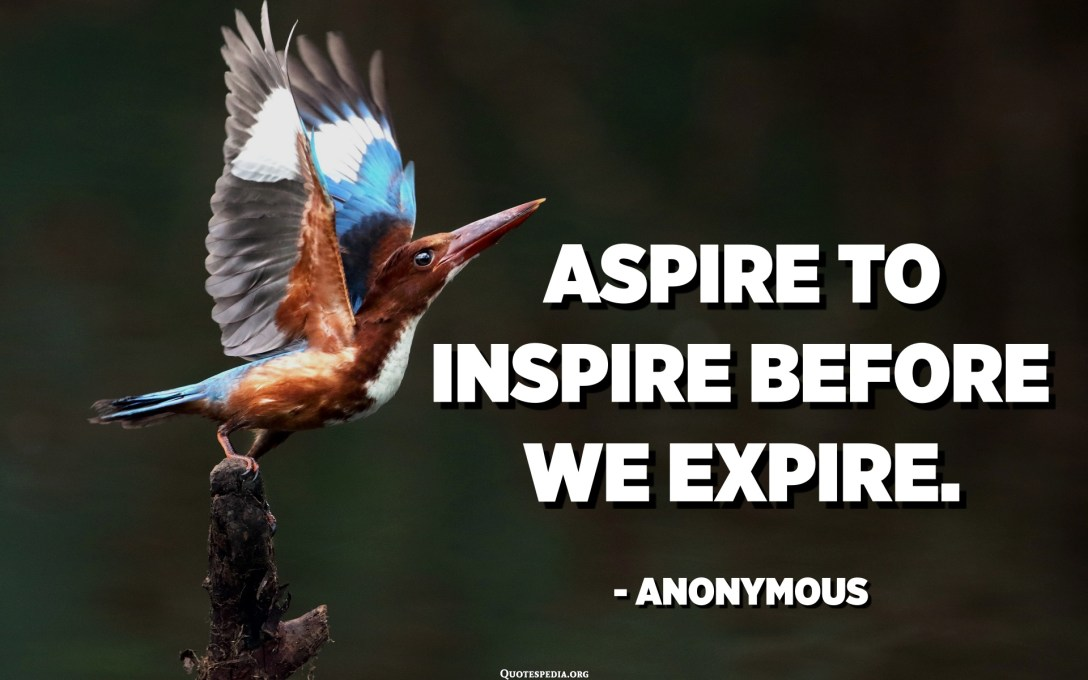Aspire to inspire before we expire. - Anonymous