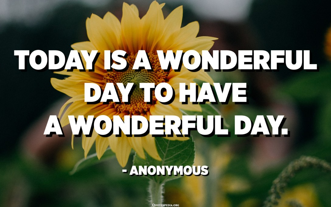 Today is a wonderful day to have a wonderful day. - Anonymous