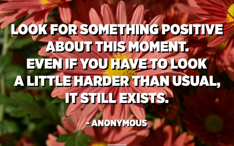 Look for something positive about this moment. Even if you have to look a little harder than usual, it still exists. - Anonymous