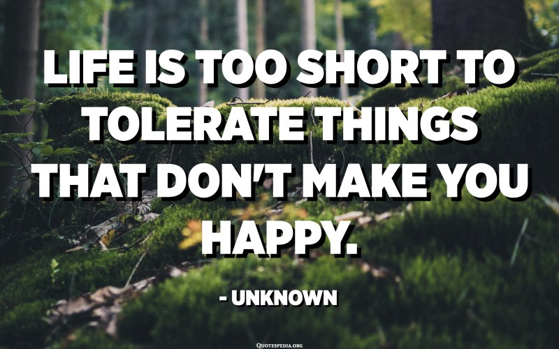 Life is too short to tolerate things that don't make you happy. - Unknown