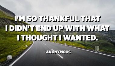 Tako sem hvaležen, da nisem končal s tem, kar sem mislil, da hočem. - Anonimni