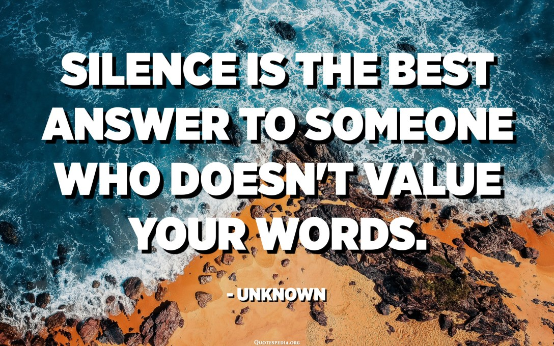 Silence is the best answer to someone who doesn't value your words. - Unknown