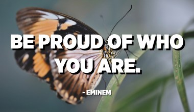 Be proud of who you are. - Eminem