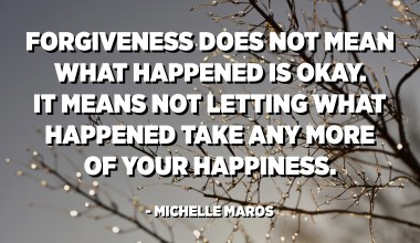 Forgiveness does not mean what happened is okay. It means not letting what happened take any more of your happiness. - Michelle Maros