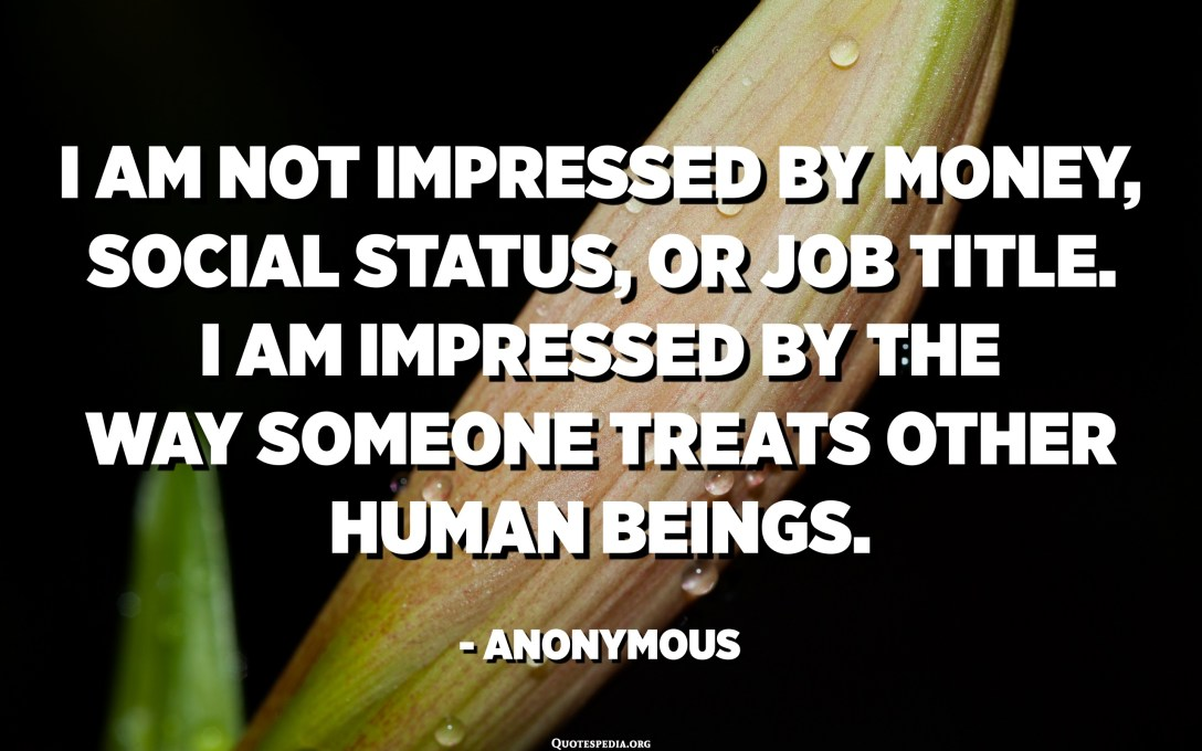 I am not impressed by money, social status, or job title. I am impressed by the way someone treats other human beings. - Anonymous