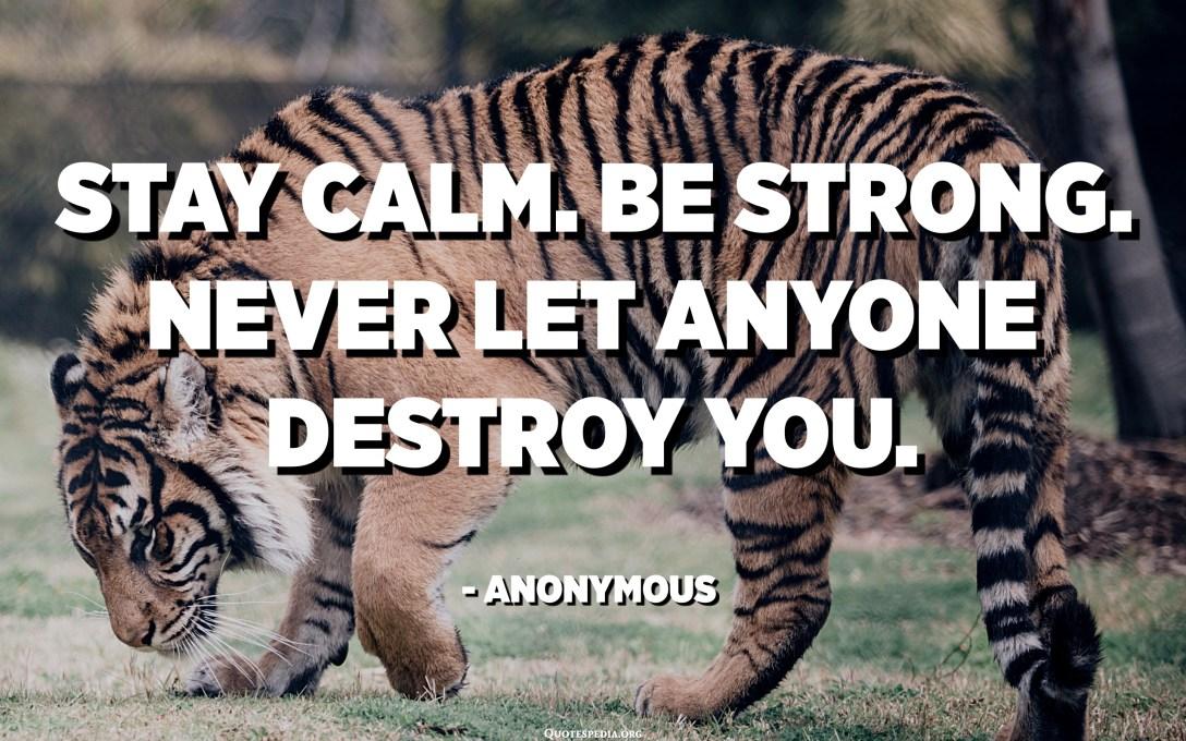 Ostani miren. Bodi močen. Nikoli ne dovolite, da vas kdo uniči. - Anonimni