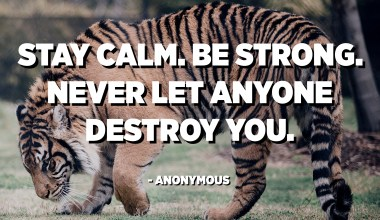 Stay calm. Be strong. Never let anyone destroy you. - Anonymous
