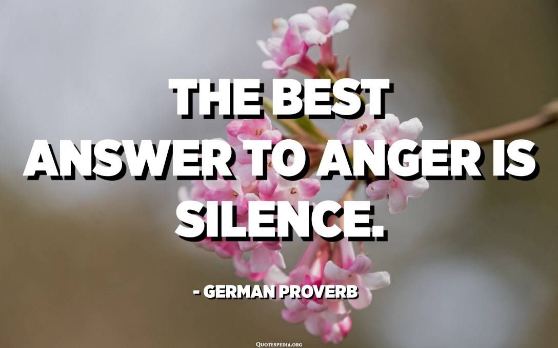 The best answer to anger is silence. - German Proverb
