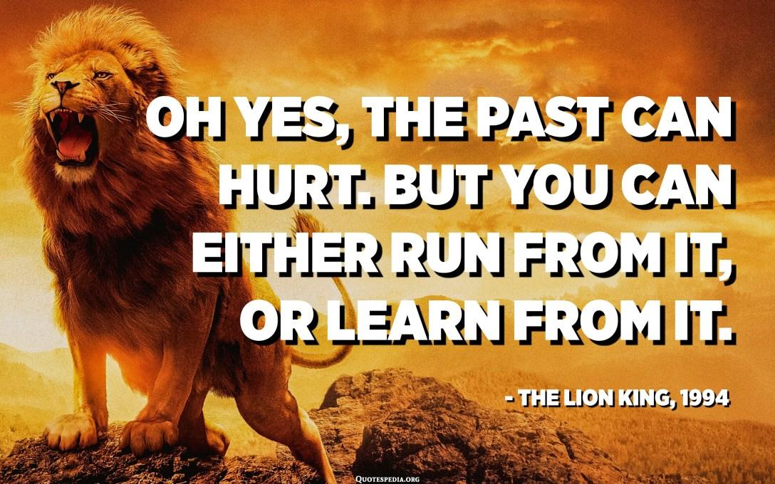 Oh, sí, el passat pot fer mal. Però podeu executar-ne o aprendre'n. - Rafiki a El rei lleó, 1994