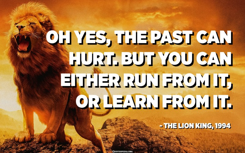 Oh yes, the past can hurt. But you can either run from it, or learn from it. - Rafiki in The Lion King, 1994