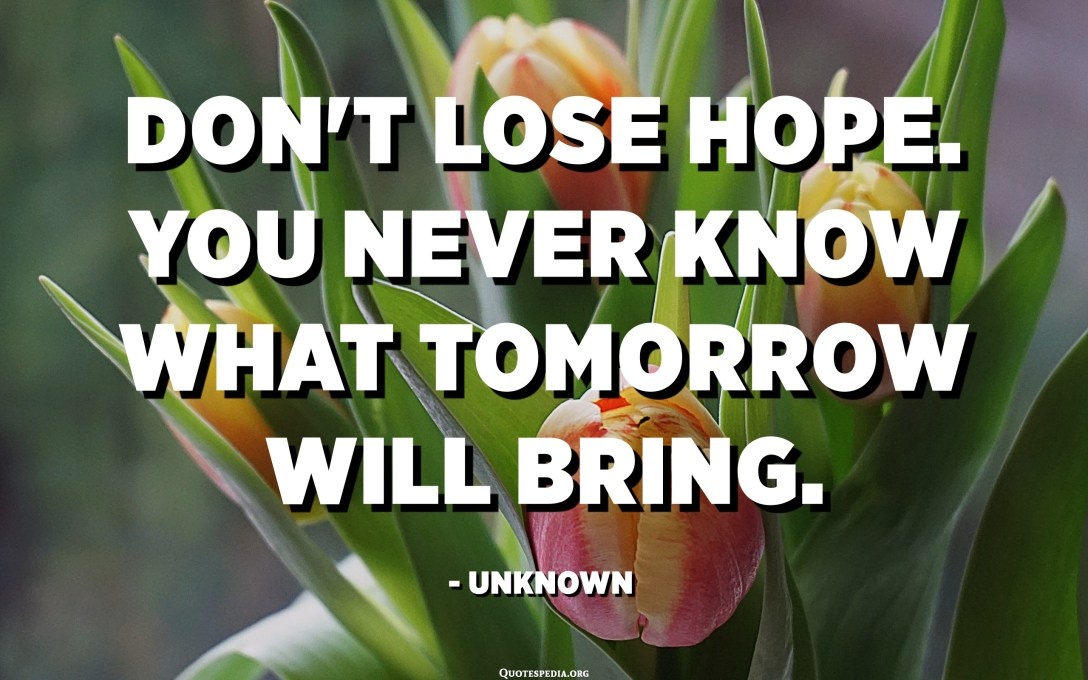 Don't lose hope. You never know what tomorrow will bring. - Unknown