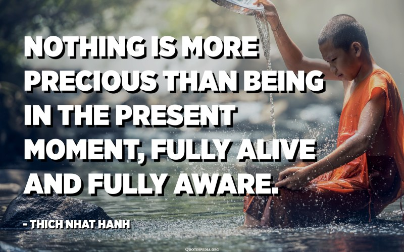 Nothing is more precious than being in the present moment, fully alive and fully aware. - Thich Nhat Hanh