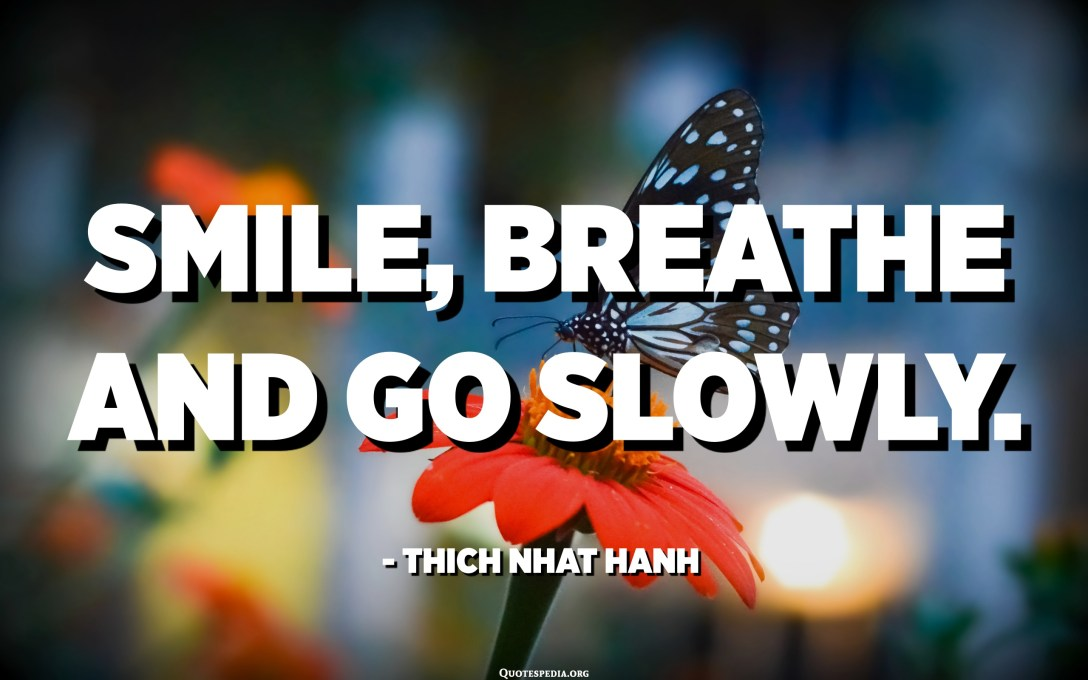 Smile, breathe and go slowly. - Thich Nhat Hanh