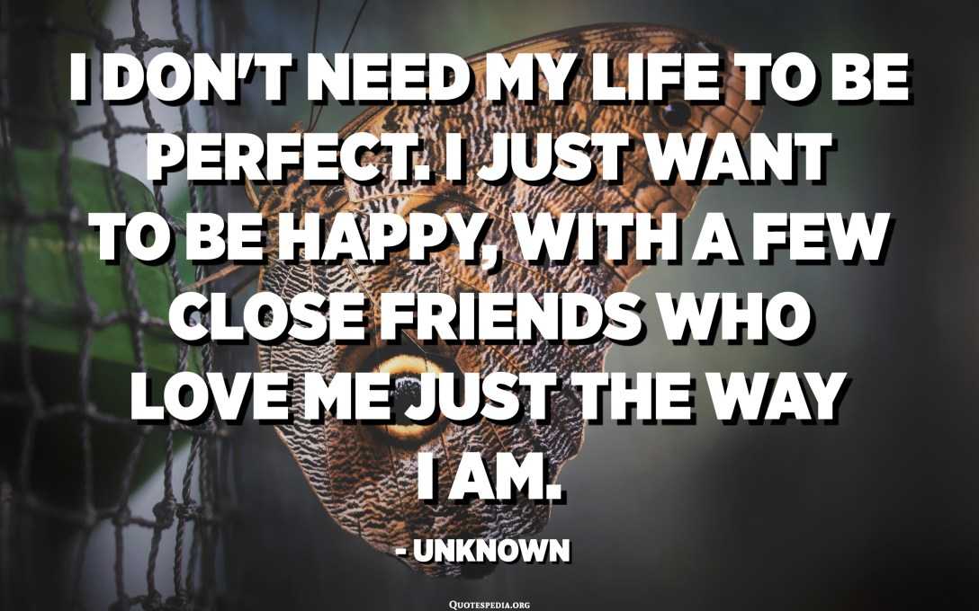 I don't need my life to be perfect. I just want to be happy, with a few close friends who love me just the way I am. - Unknown