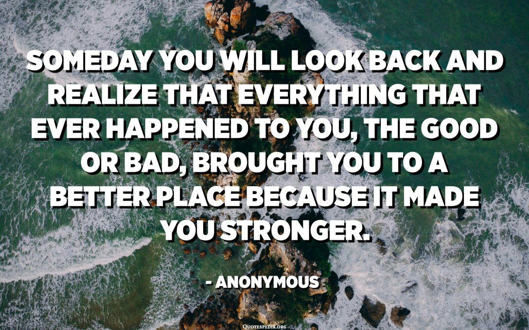 Someday you will look back and realize that everything that ever happened to you, the good or bad, brought you to a better place because it made you stronger. - Anonymous