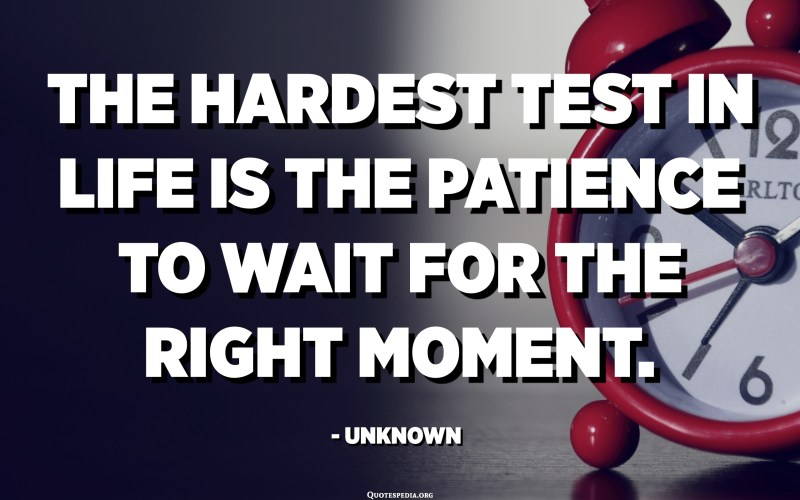 The hardest test in life is the patience to wait for the right moment. - Unknown