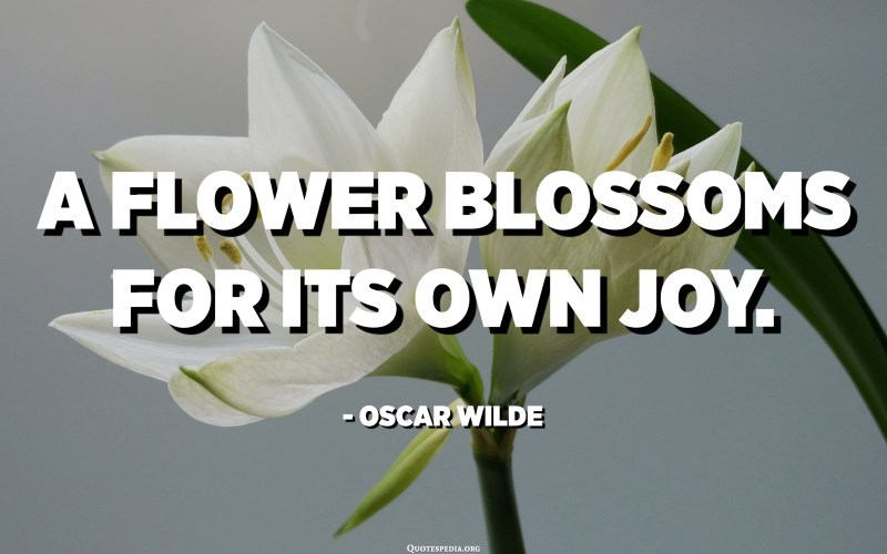 A flower blossoms for its own joy. - Oscar Wilde