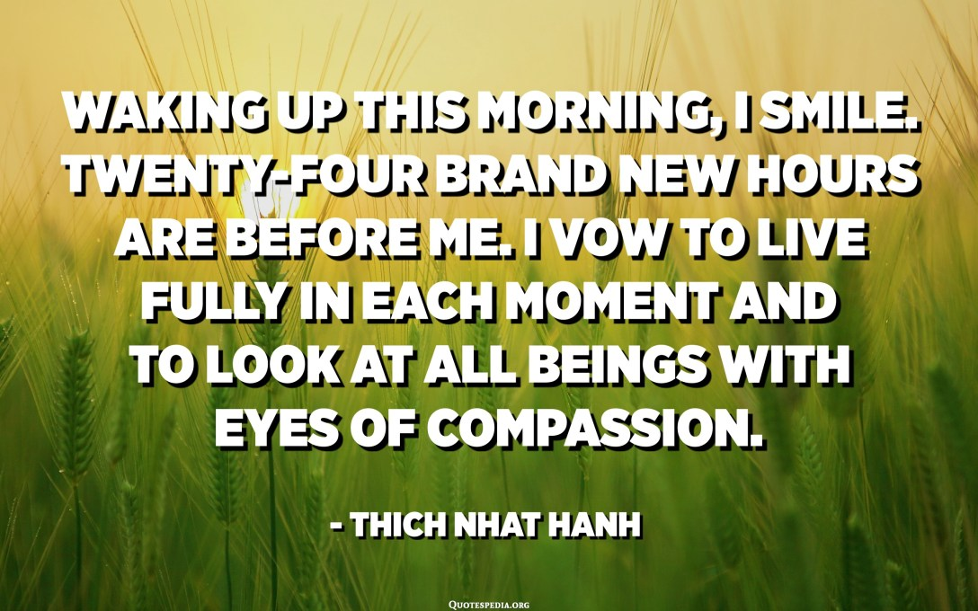 Waking up this morning, I smile. Twenty-four brand new hours are before me. I vow to live fully in each moment and to look at all beings with eyes of compassion. - Thich Nhat Hanh