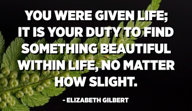 You were given life; it is your duty (and also your entitlement as a human being) to find something beautiful within life, no matter how slight. - Elizabeth Gilbert