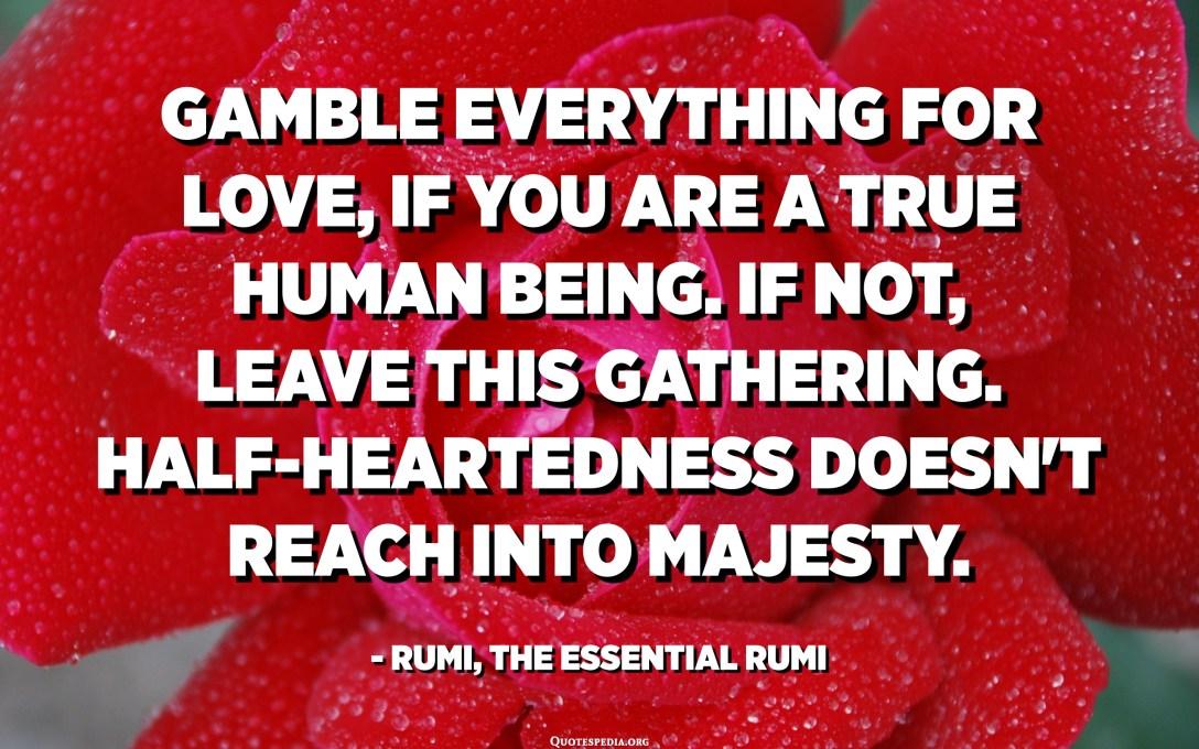 هر شي کي پيار لاء گيمو ڪريو ، جيڪڏهن توهان هڪ حقيقي انسان آهيو. جيڪڏھن نه ، ھن اجتماع کي ڇڏي ڏيو. اڌ دل جي عزت تائين نه پھچي. - رومي ، لازمي رومي