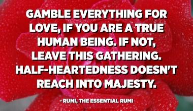 Kumar gjithçka për dashuri, nëse jeni një qenie e vërtetë njerëzore. Nëse jo, lini këtë mbledhje. Gjysma-zemra nuk arrin deri në madhështi. - Rumi, The Rumi Thelbësore