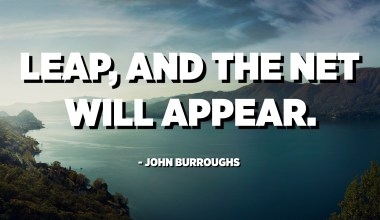 Leap, and the net will appear. - John Burroughs