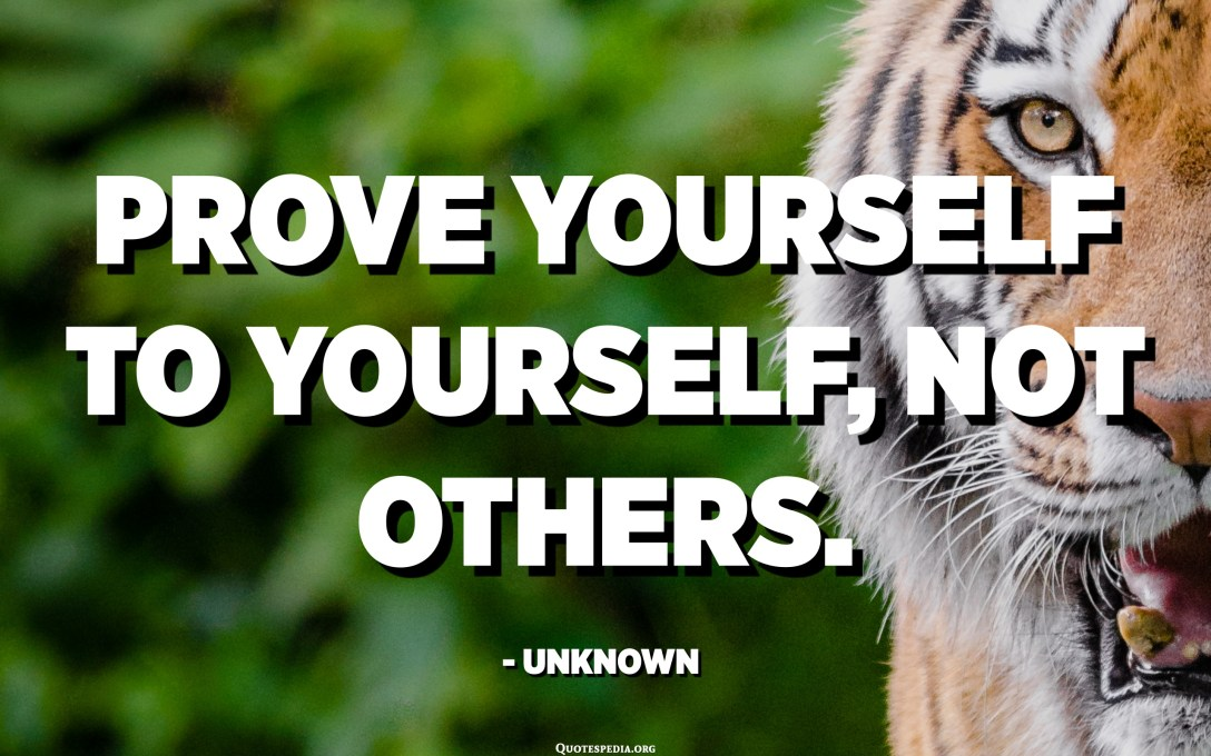 Prove yourself to yourself, not others. - Unknown