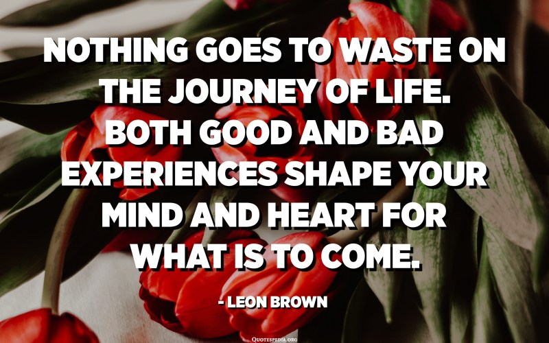 Nothing goes to waste on the journey of life. Both good and bad experiences shape your mind and heart for what is to come. - Leon Brown