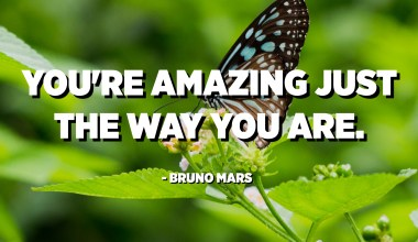 You're amazing just the way you are. - Bruno Mars