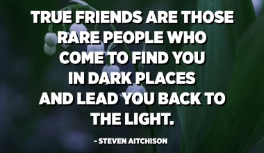 True friends are those rare people who come to find you in dark places and lead you back to the light. - Steven Aitchison