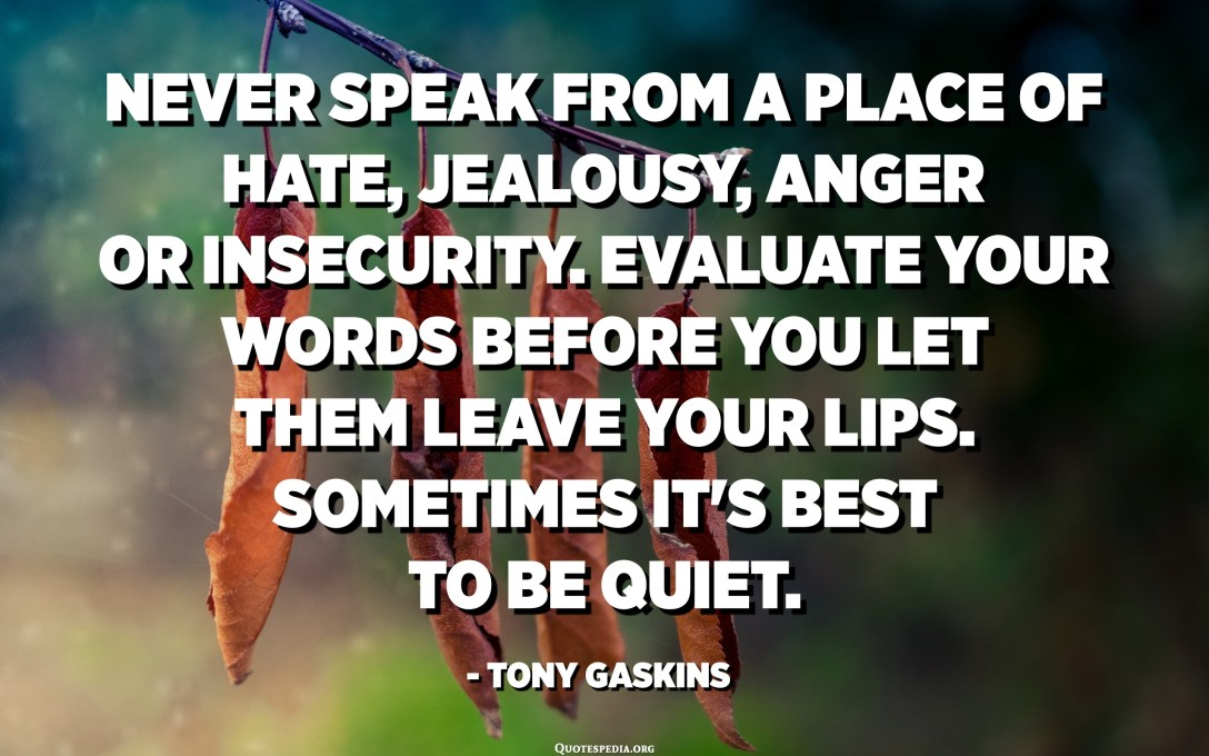 Never speak from a place of hate, jealousy, anger or insecurity. Evaluate your words before you let them leave your lips. Sometimes it's best to be quiet. - Tony Gaskins