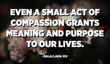 Even a small act of compassion grants meaning and purpose to our lives. - Dalai Lama XIV