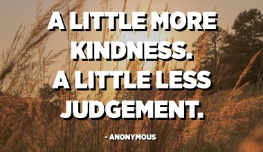 A little more kindness. A little less judgement. - Anonymous