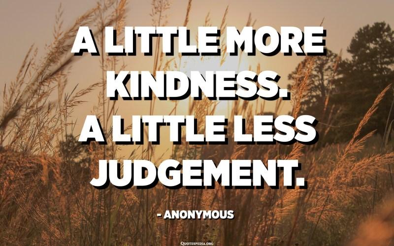 A little more kindness. A little less judgement. - Anonymous