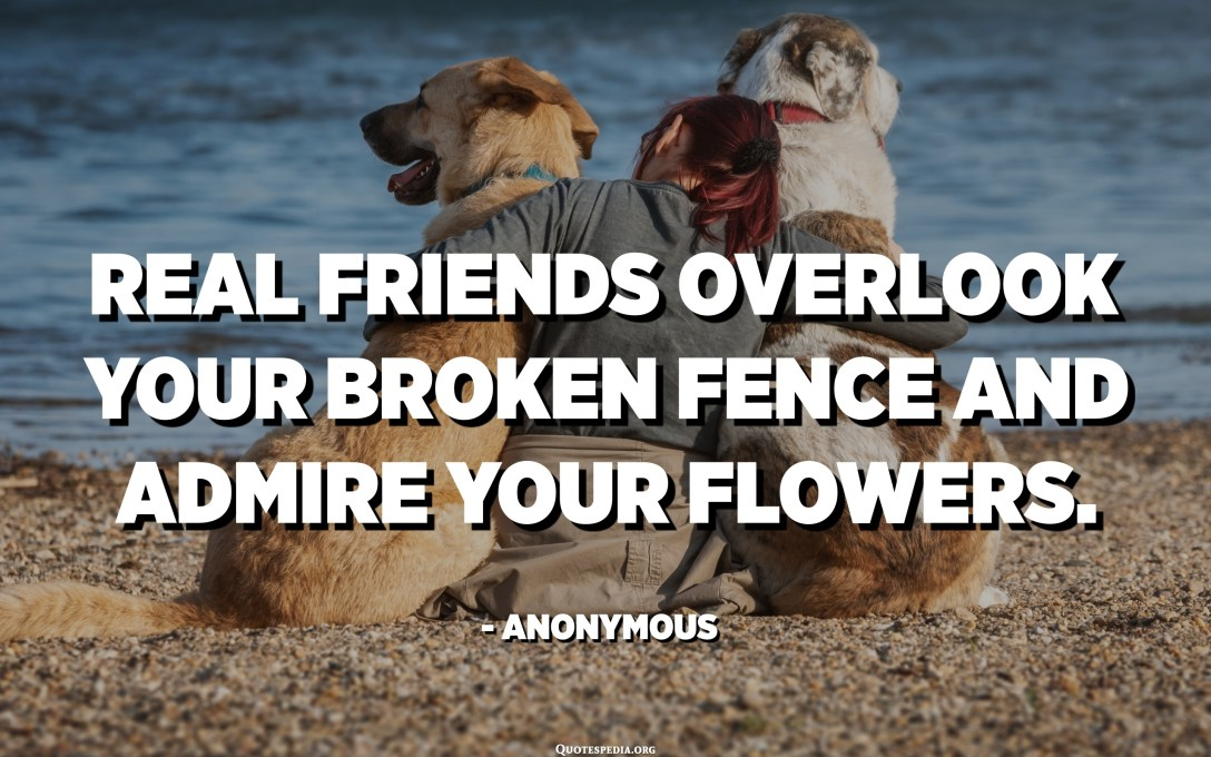 Real friends overlook your broken fence and admire your flowers. - Anonymous